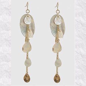 Jewelry - Clam Shell Teardrop Dangle Earrings